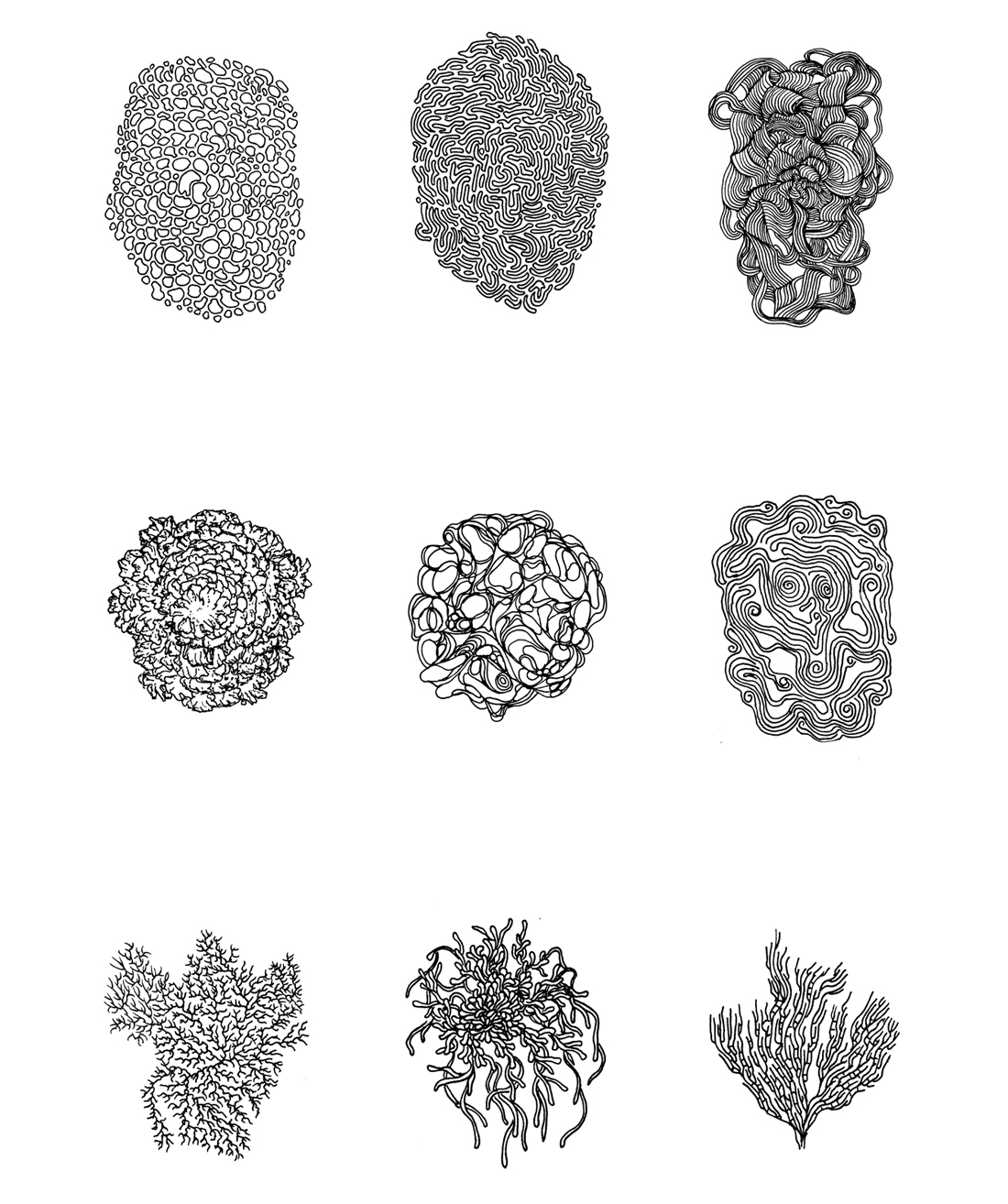GENERATIVE FORM COLLECTION / INK DRAWINGS – different, various rulesets