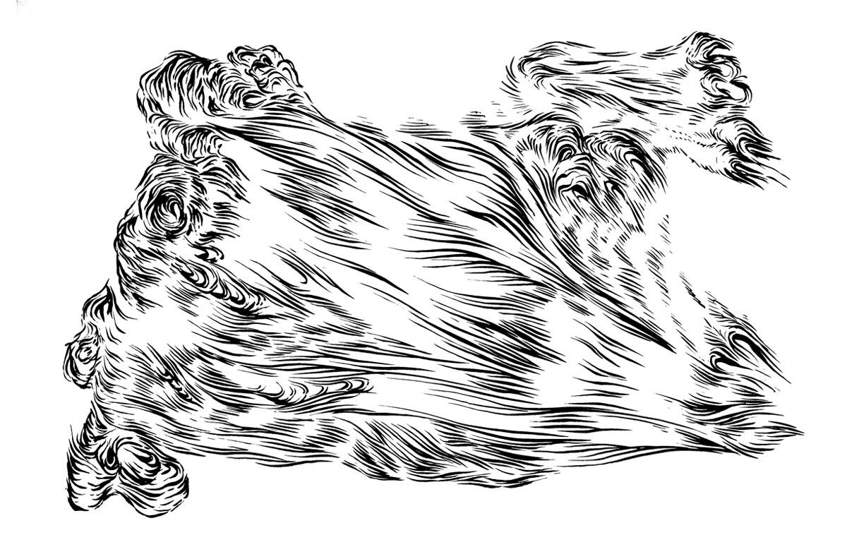 - brushpen ink sketch -  297 x 210 mm